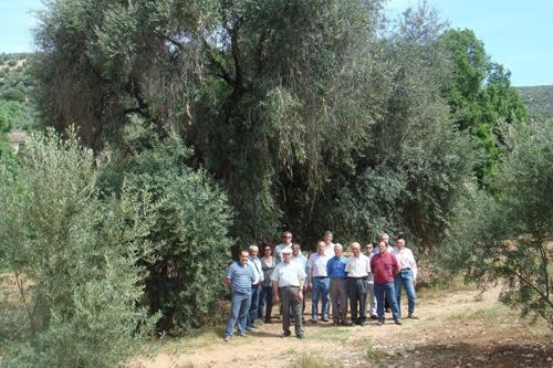 Curso de Agricultura Ecológica. Casilla de Martos (Jaén).1