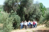 Curso de Agricultura Ecológica. Casilla de Martos (Jaén).200+150