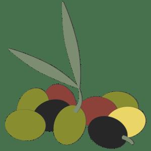 produccion de aceitunas