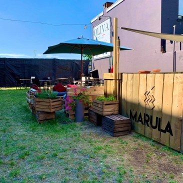 Oliva Lounge