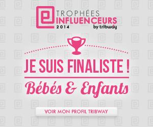 Les trophées Influenceurs Tribway 2014