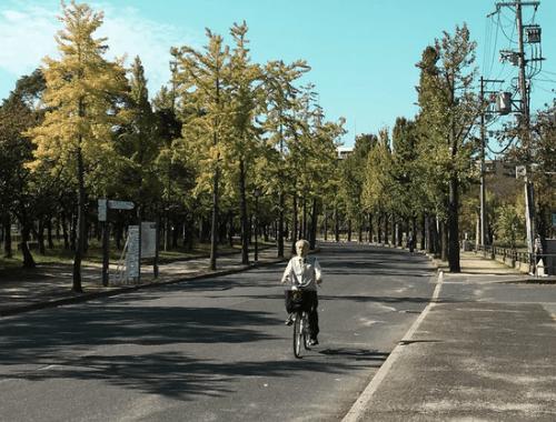 L'homme qui fait du vélo le plus lentement du monde