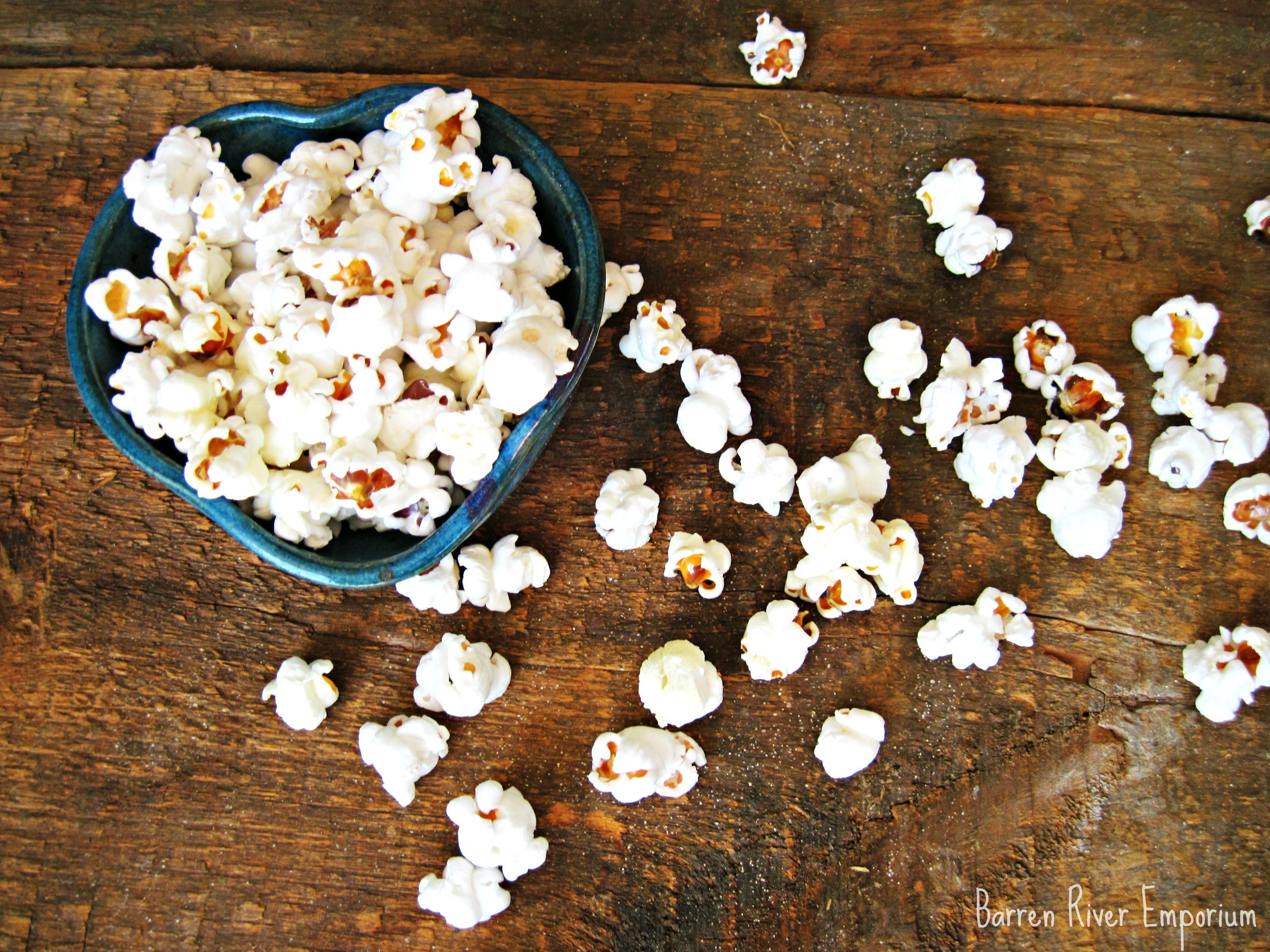 glass gem corn seeds  OliveLoaf Design