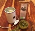 Zerkleinert und gemahlen entfalten Olivenblätter Aroma und Geschmack