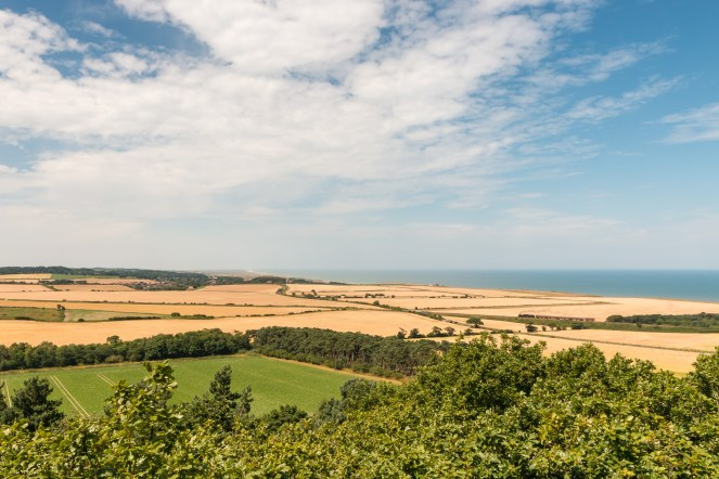 View over the treetops, fields and out to the sea, from the top of the gazebo tower. (Photos from National Trust Sheringham Park.)