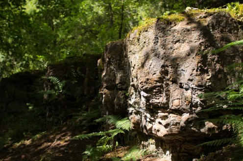 A shaft of sunlight lighting up the rocks in the bottom of the Gullet, left exposed by the extraction of ironstone. Photos from Wildlife Trusts Twywell Hills and Dales nature reserve in Northamptonshire, UK.