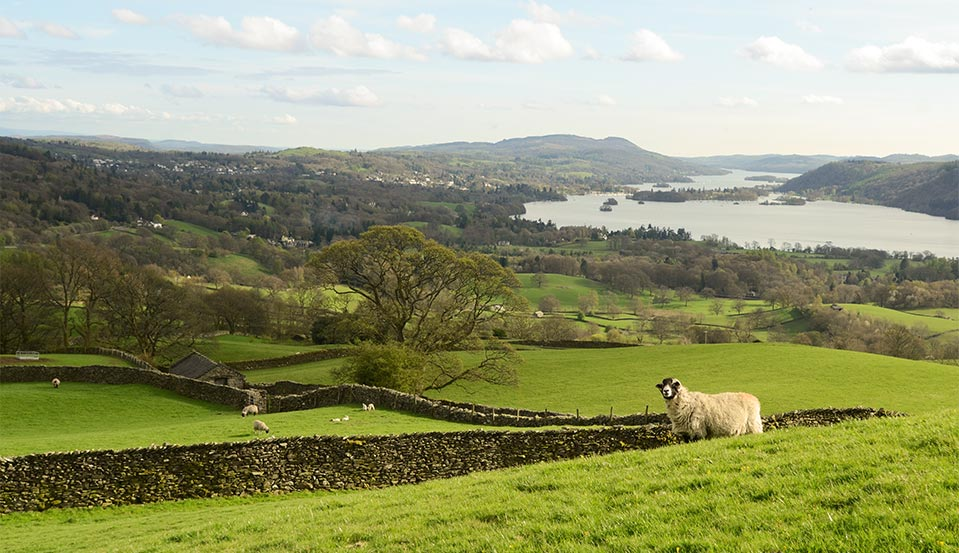 lake district windermere