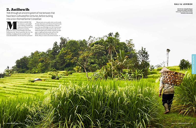 bali-jatiluwih-rice-terraces