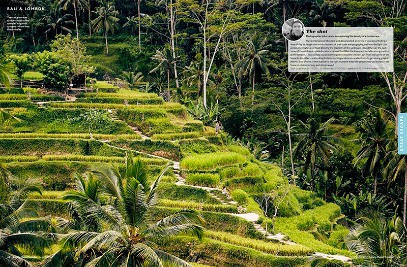 ubud-rice-terraces