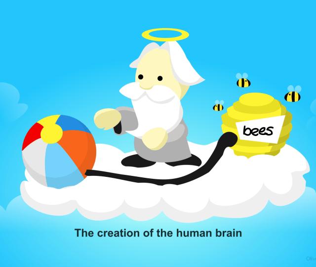 The Origin Of The Human Brain