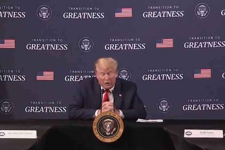 Donald Trump: Transition To Greatness