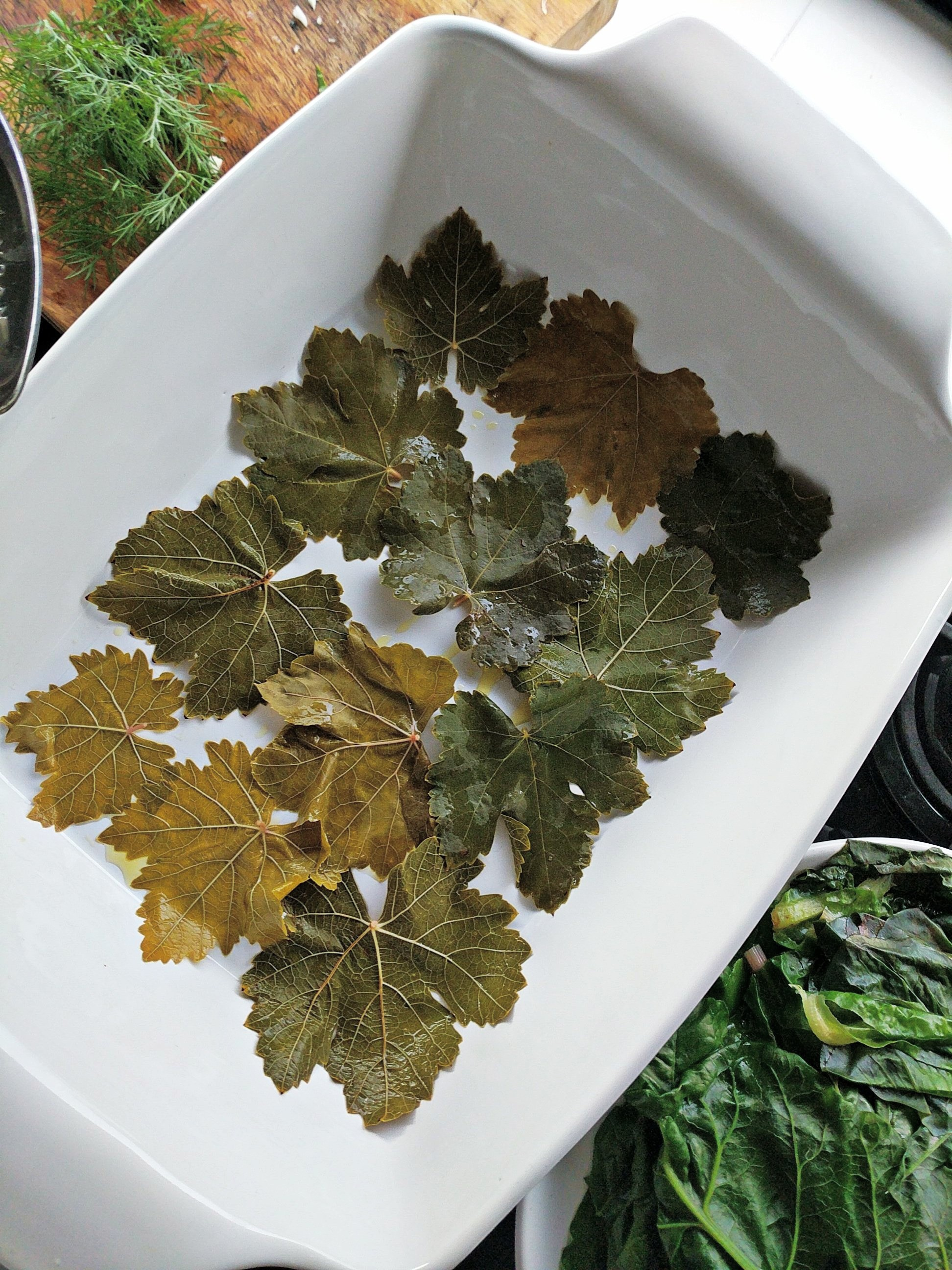 grape vine leaves in mediterranean cuisine