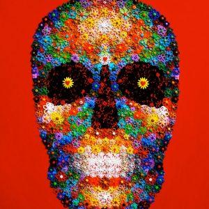 Waleska Nomura - Red Skull