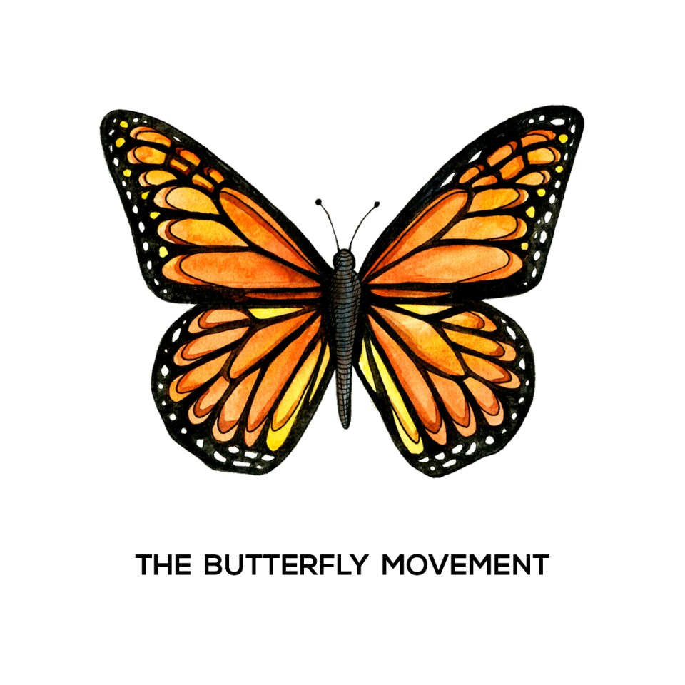 The butterfly movement