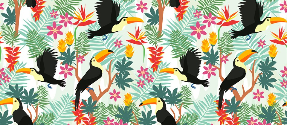 Olivia Linn Toucan collection pattern