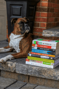 How to writes your first book
