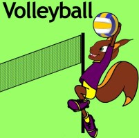 AV-volley (Small)