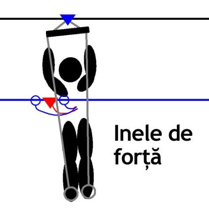 R-IneleForta