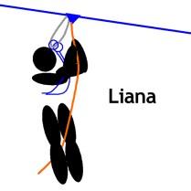 R-liana