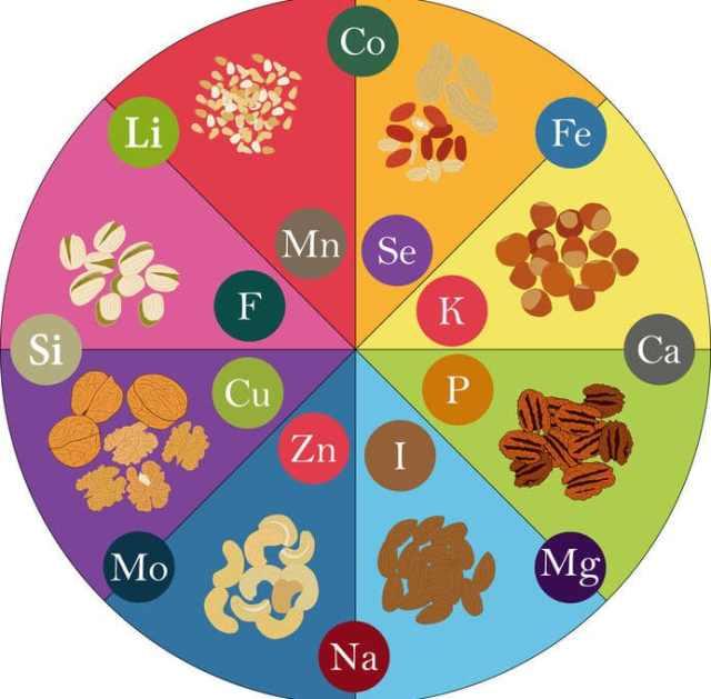 Najistotniejsze mikro i makroelementy w diecie