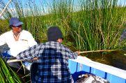 55 lake titicaca mar cut reed