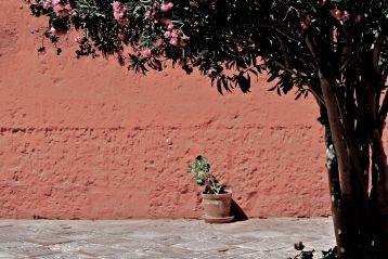 03 santa catalina monastery