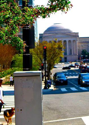 27 ollie walk national gallery of art