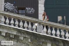 A hug on the stairs of Rialto Bridge.