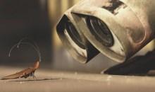 Μάθε πως θα απαλλαγείς από τις κατσαρίδες!