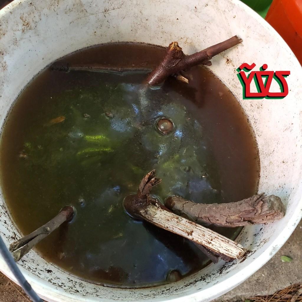 Jìgìjìgì EP 006 – Compost