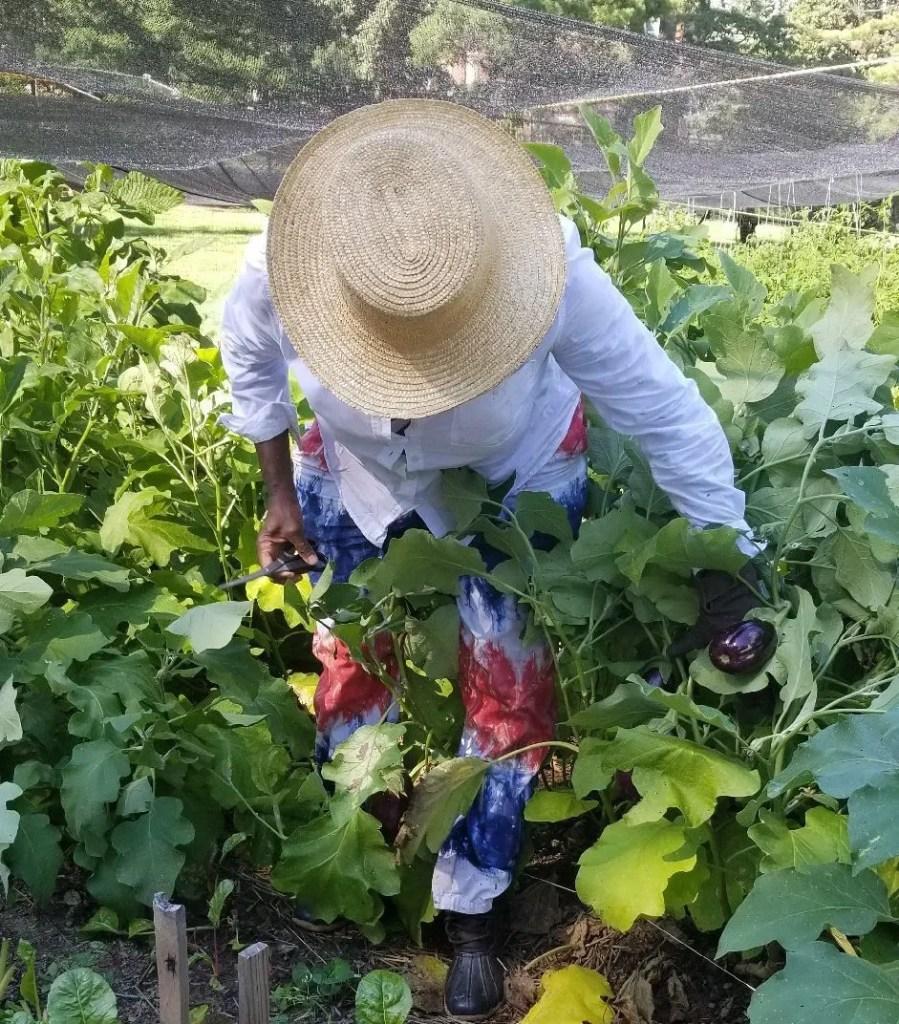 Jìgìjìgì EP016 – Farmer Gigi