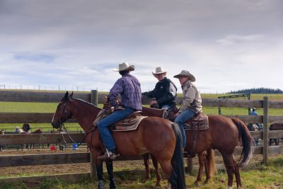 Horseback riders at a Cutting Horse competition at Haughton Ranch in Knutsford, BC
