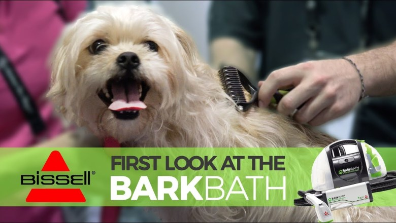 NEW Product Review: The BISSELL BarkBath – Better Bath Time?