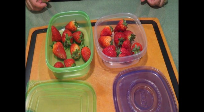 Debbie Meyer's UltraLight GreenBoxes – Product Review (234)