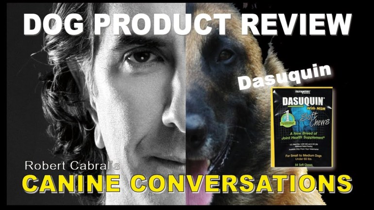 Dasuquin Product Review by Robert Cabral – Dog Health and Fitness – Dog Training