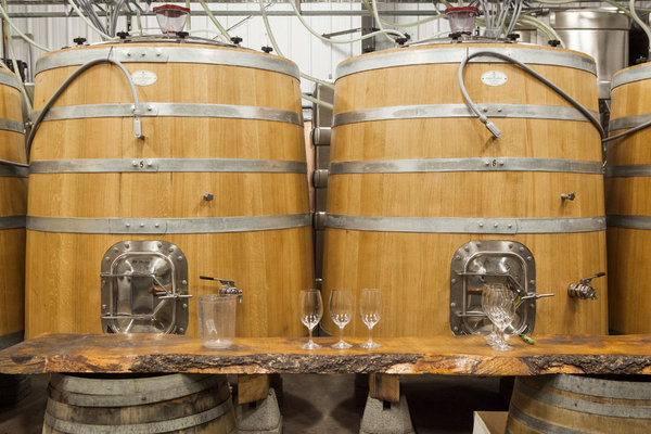 From Ontario, Cool-Climate Wines of Beauty and Vision