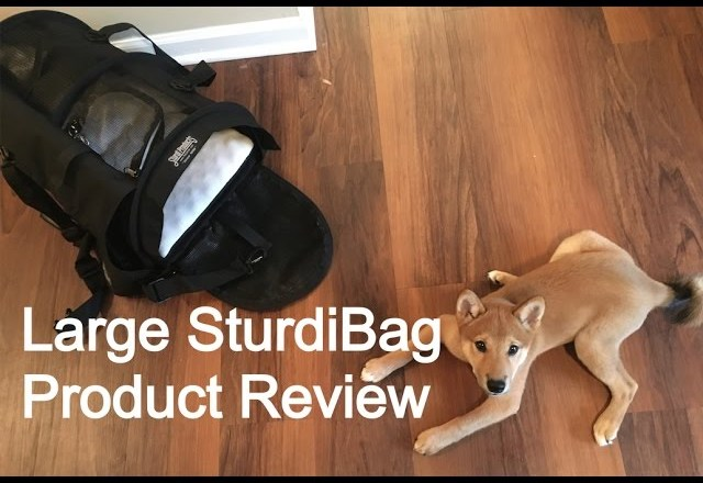 Large SturdiBag Pet Carrier Product Review