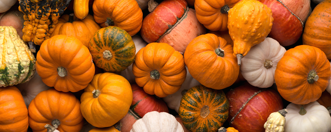 Pumpkins to welcome Autumn