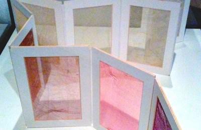"""""""Tracing Genetic Inheritance,"""" exhibit by Geraldine Ondrizek"""