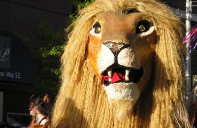 Madison Lion, photo by Xandrabeast
