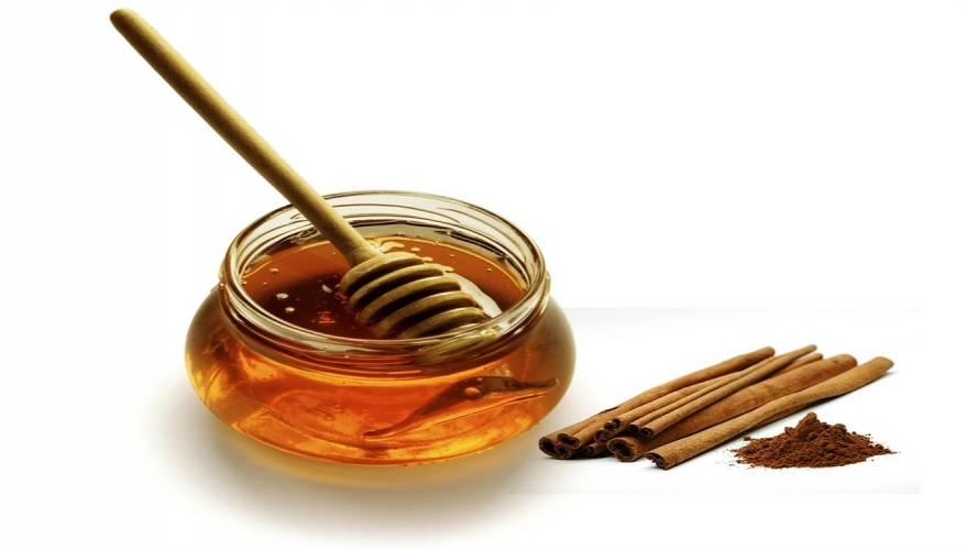 Μέλι Το απόλυτο αντίδοτο για πεσμένη ενέργεια, έξτρα κιλά, άσχημη αναπνοή!
