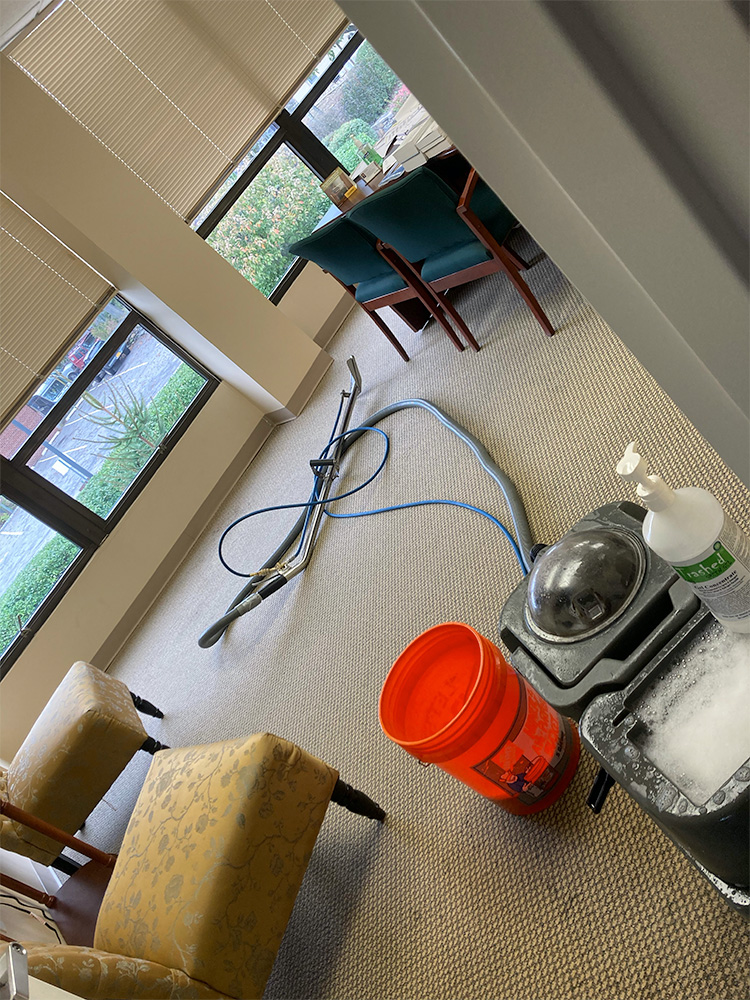 Commercial Carpet Cleaning in Westchester