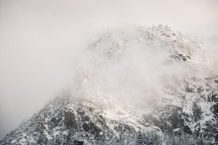 Fog and Yosemite