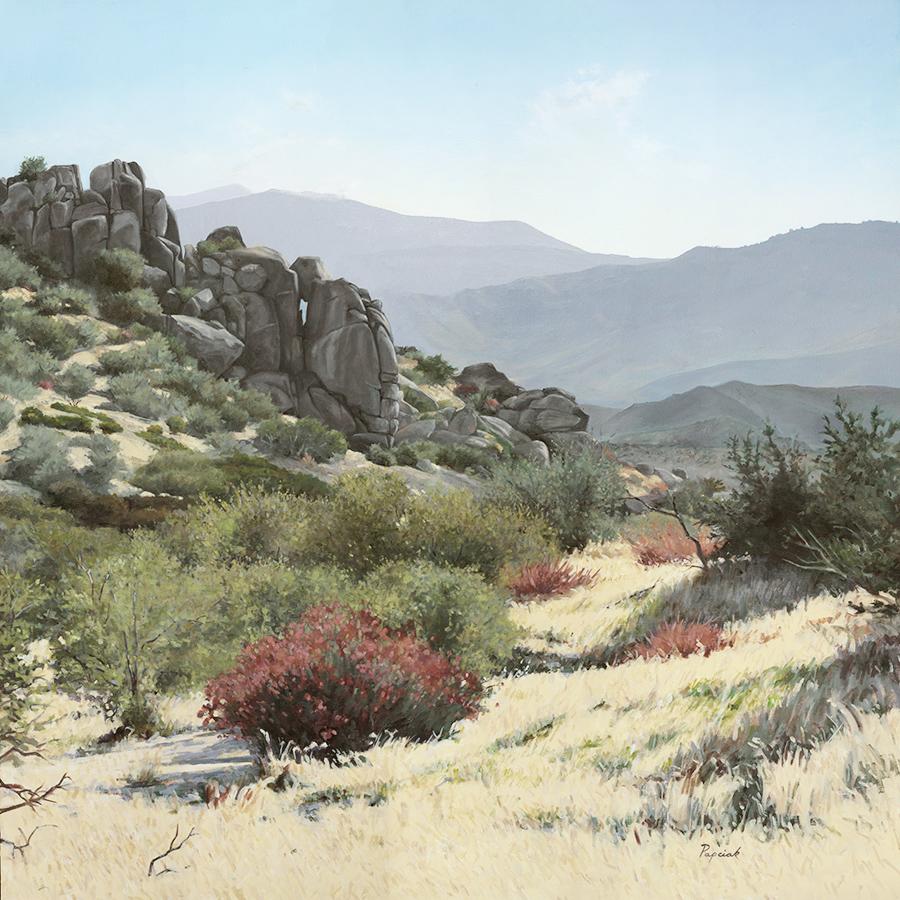 Item 187 - Papciak, High Desert Near Ranchita