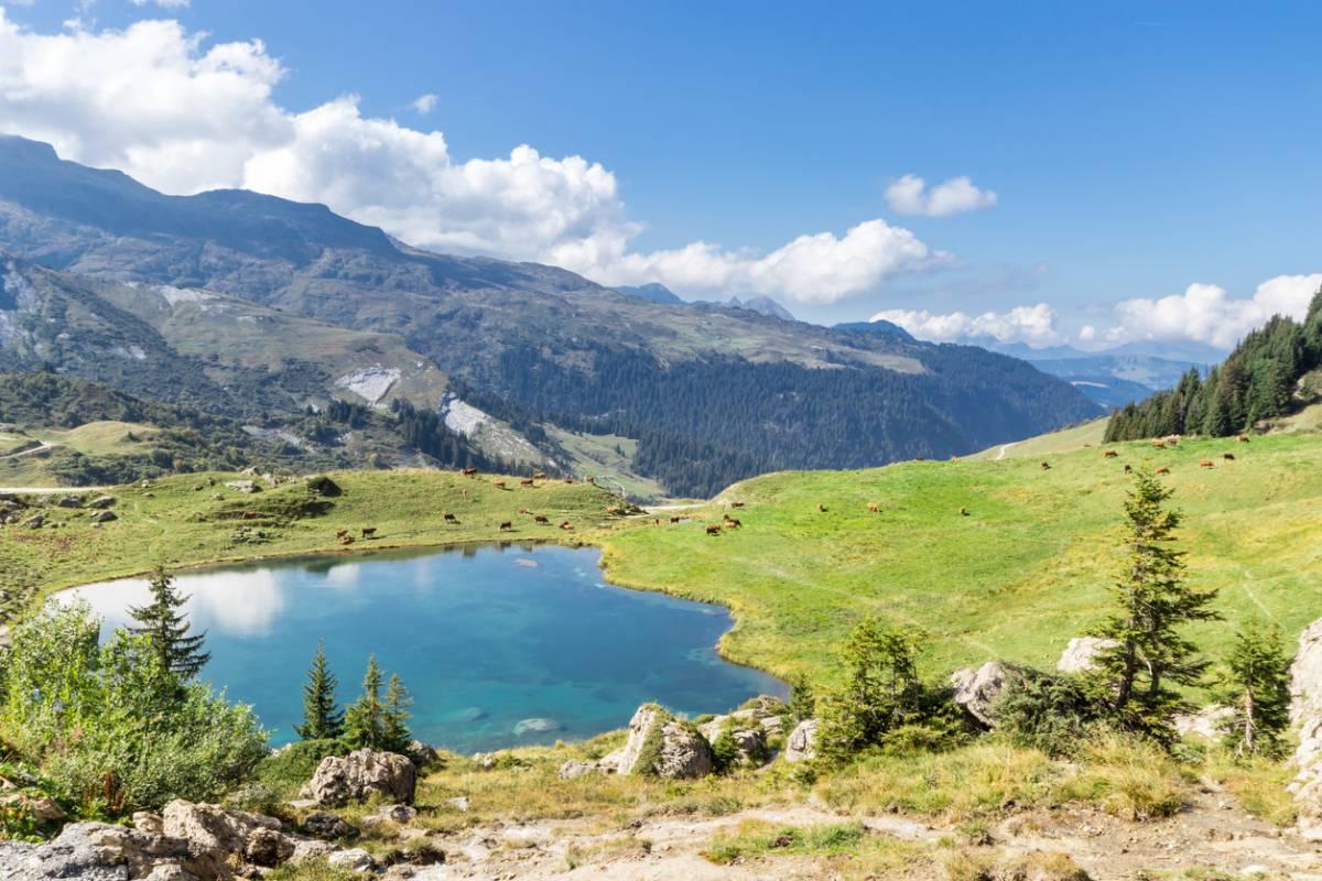 Partir camper en Savoie en été : des vacances réussies