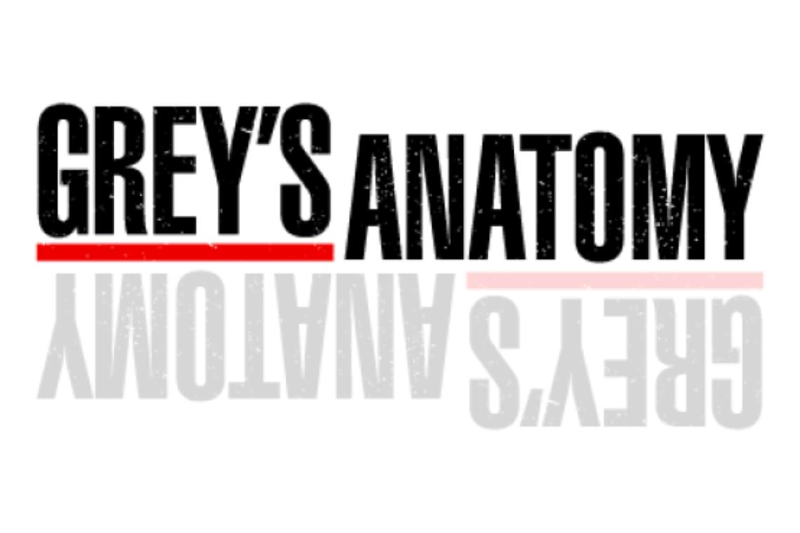 Grey's Anatomy, un succès ininterrompu