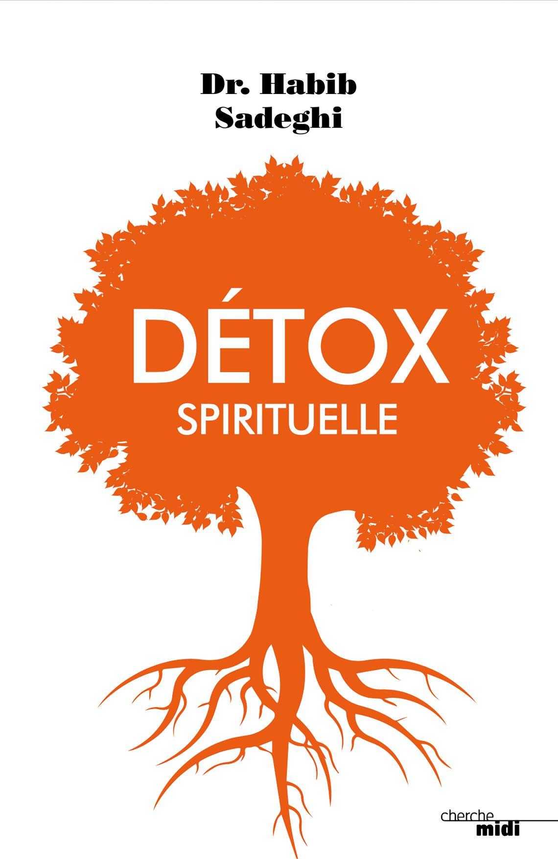 "Détox spirituelle, la cure ""en conscience"" du Dr Habib Sadeghi"