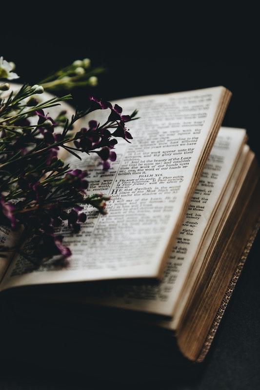 Une sorcière est une femme qui a du savoir, des connaissances et donc un pouvoir.