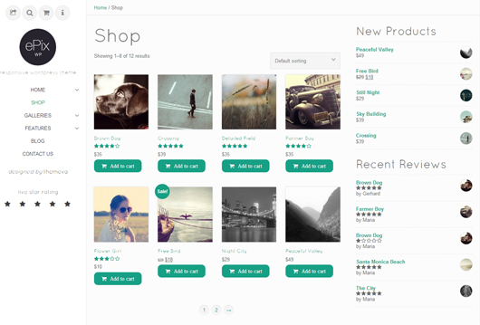 Selling WordPress Theme