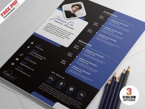 Free Designer Resume CV Template (PSD)